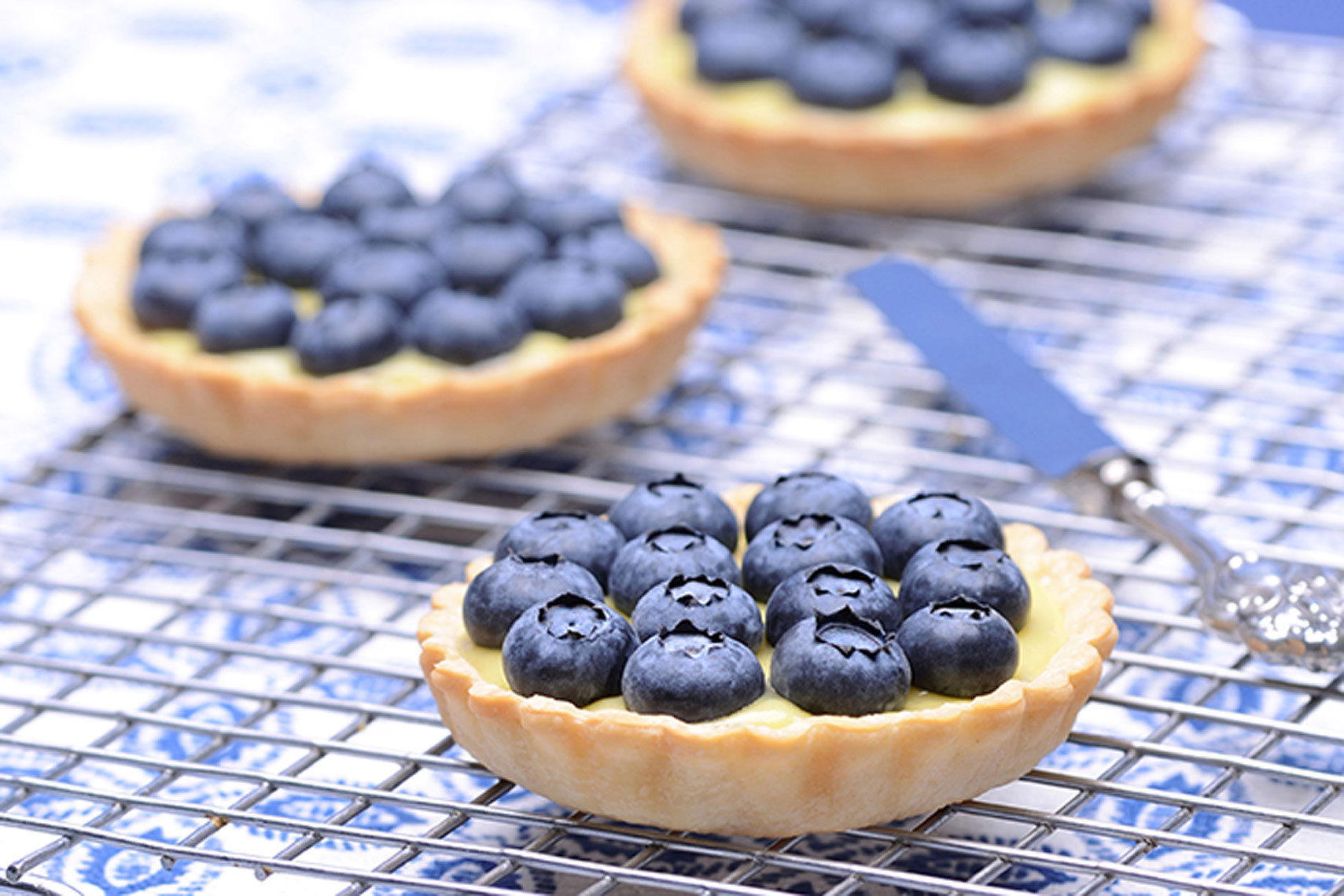 Blueberry-tart-recipe-photography-by-Los-Angeles-food-photographer-Joe-Atlas.